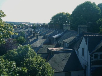Cathays rooftops